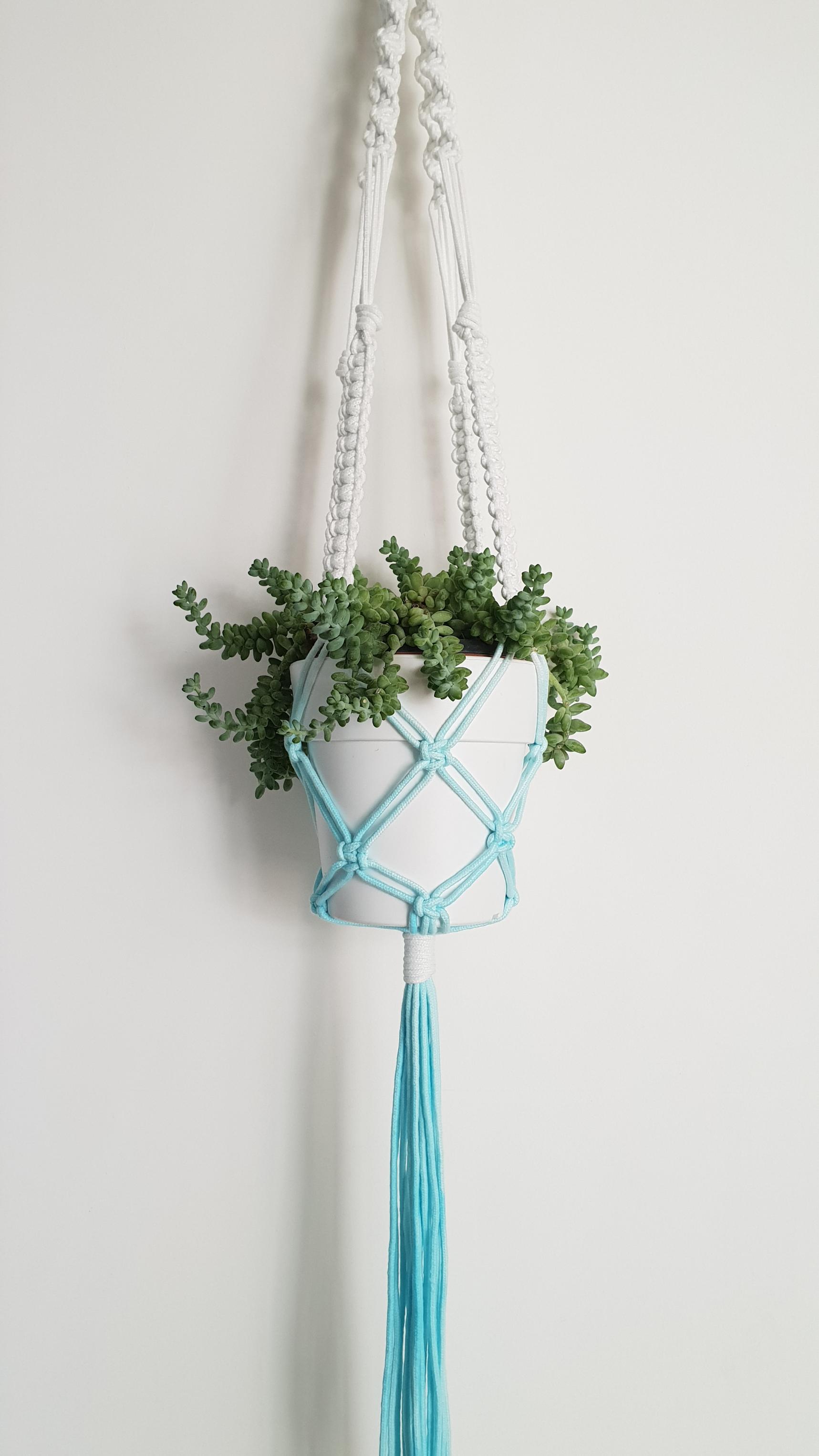 Custom Macram 233 Plant Hangers Turquoise Boutique Studio